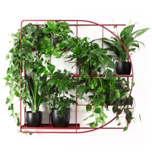 Kwietnik ścienny z roślinami