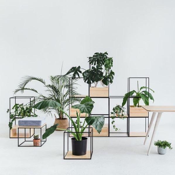 Regały modułowe z roślinami doniczkowymi