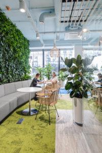 wnętrze biura ze ścianą zieleni Flofaface