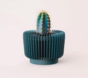 Osłonka OXY z kaktusem